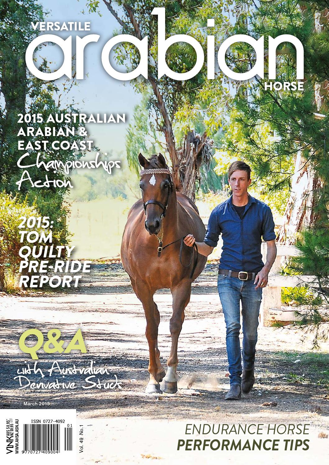 Versatile Arabian Horse By Vink Publishing Issuu
