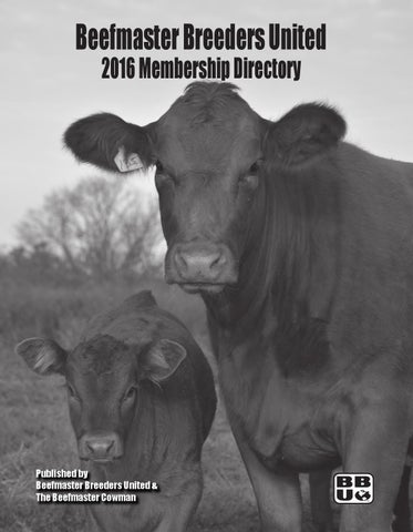 2016 Membership Directory By Beefmaster Breeders United Issuu