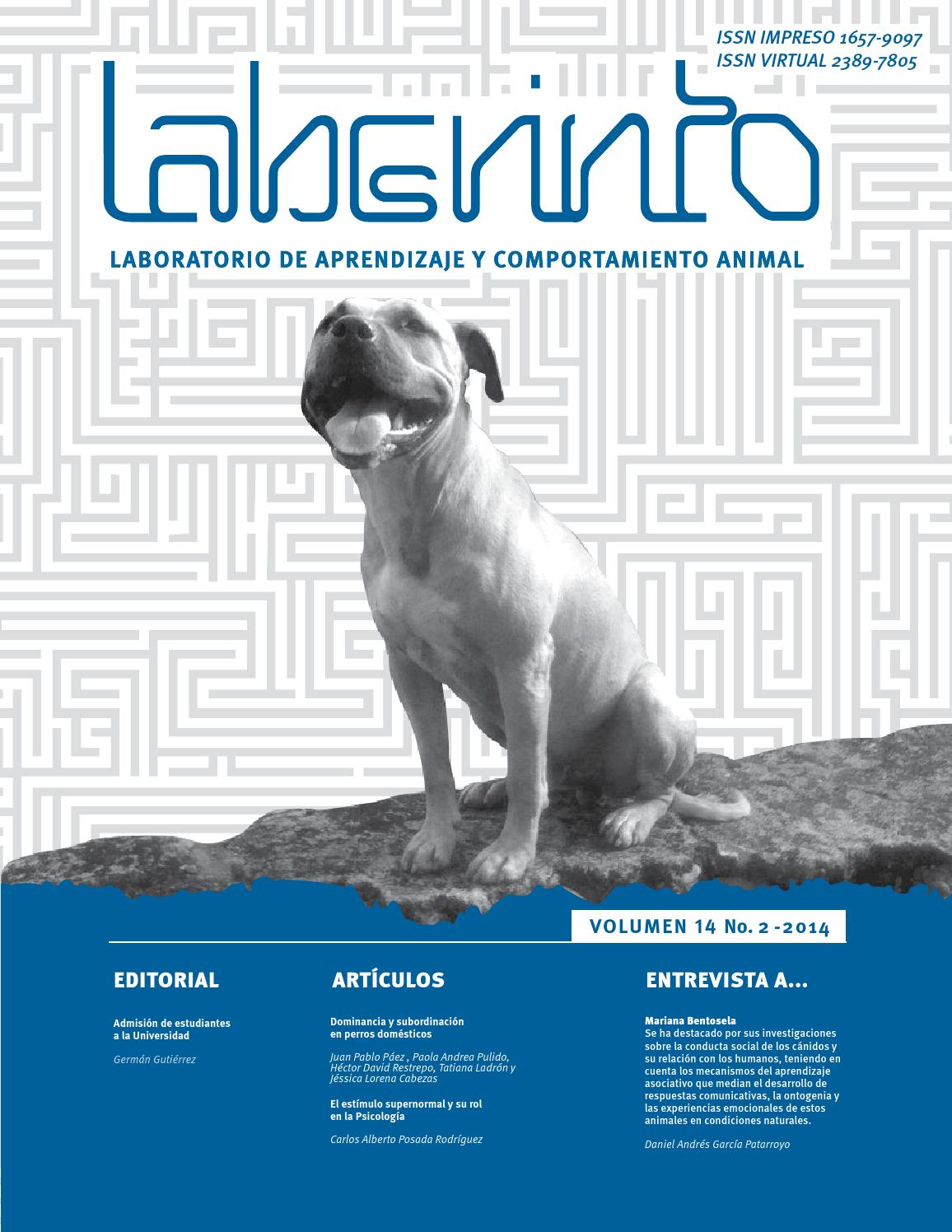 Laberinto Vol. 14(2) 2014 by Revista Laberinto - issuu