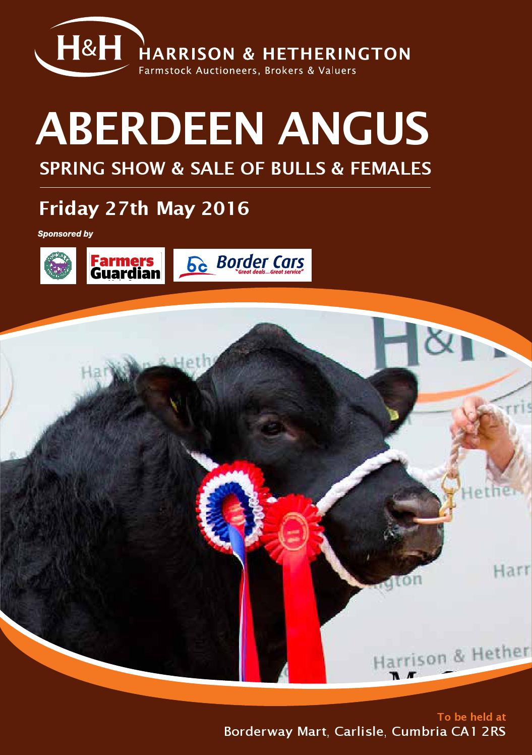 carlisle aberdeen angus cattle society spring show sale. Black Bedroom Furniture Sets. Home Design Ideas