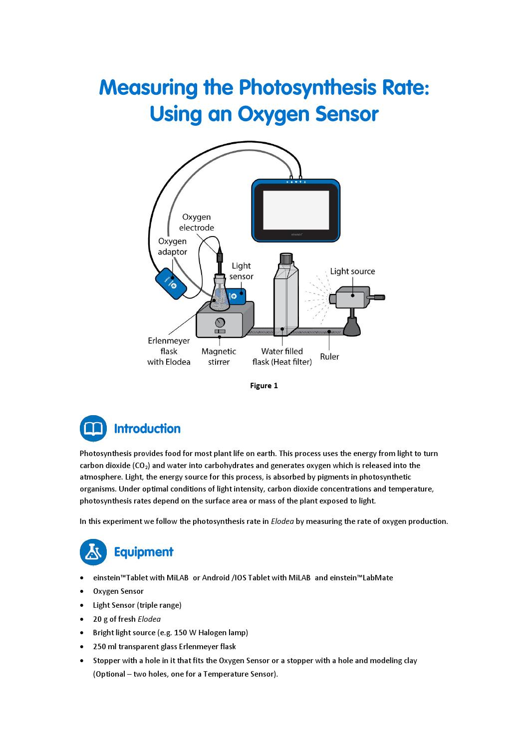 Measuring photosynthesis with an oxygen sensor by fourier education measuring photosynthesis with an oxygen sensor by fourier education issuu ccuart Choice Image