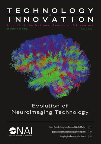 Technology & Innovation Volume 18, Number 1 by National Academy of