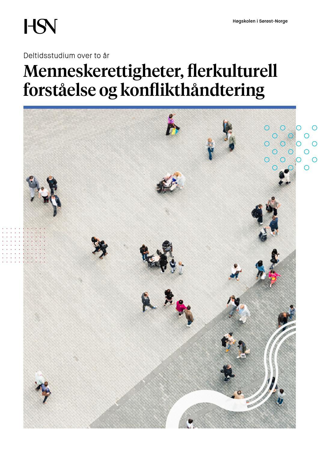 flerkulturell kompetanse definisjon