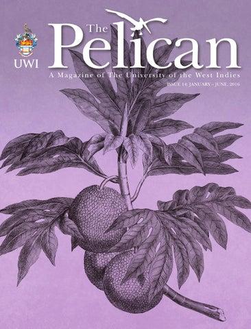 Uwi Pelican Issue 14 By Uwi St Augustine Issuu