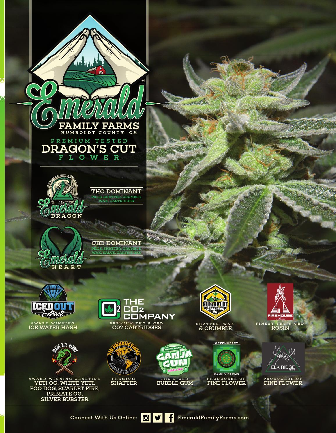 Dope Magazine - June 2016 - The Growing Issue - Southern