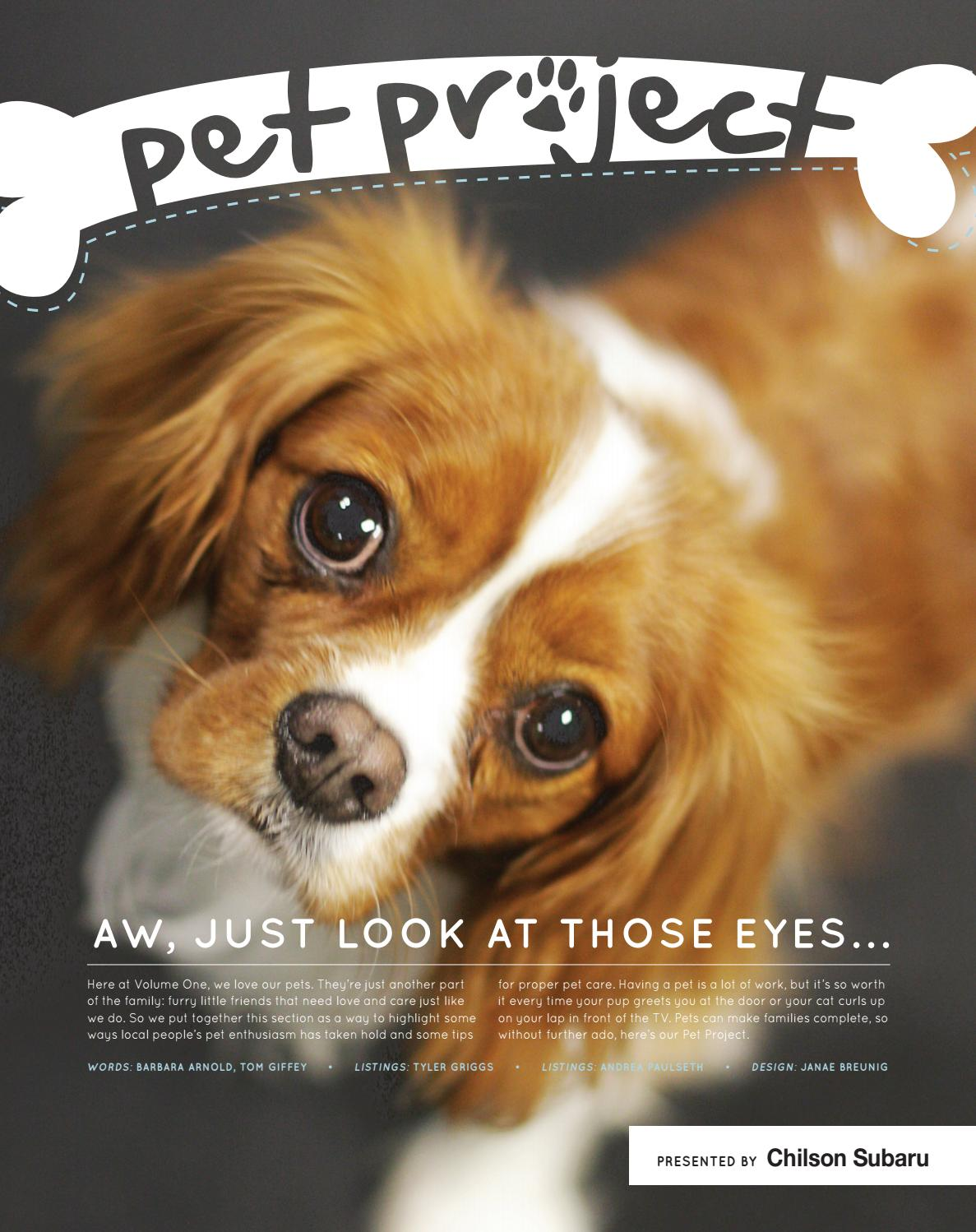 Pet Project 2015 By Volume One Magazine Issuu
