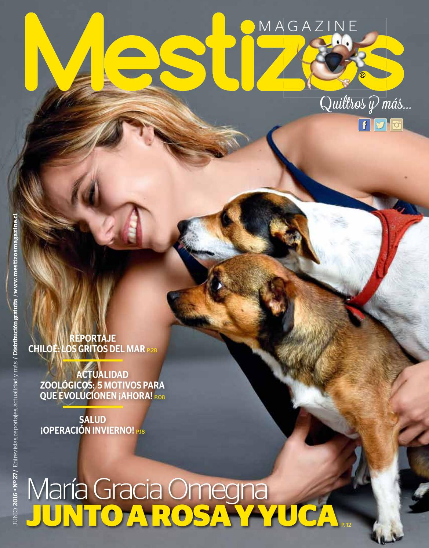 mestizos27