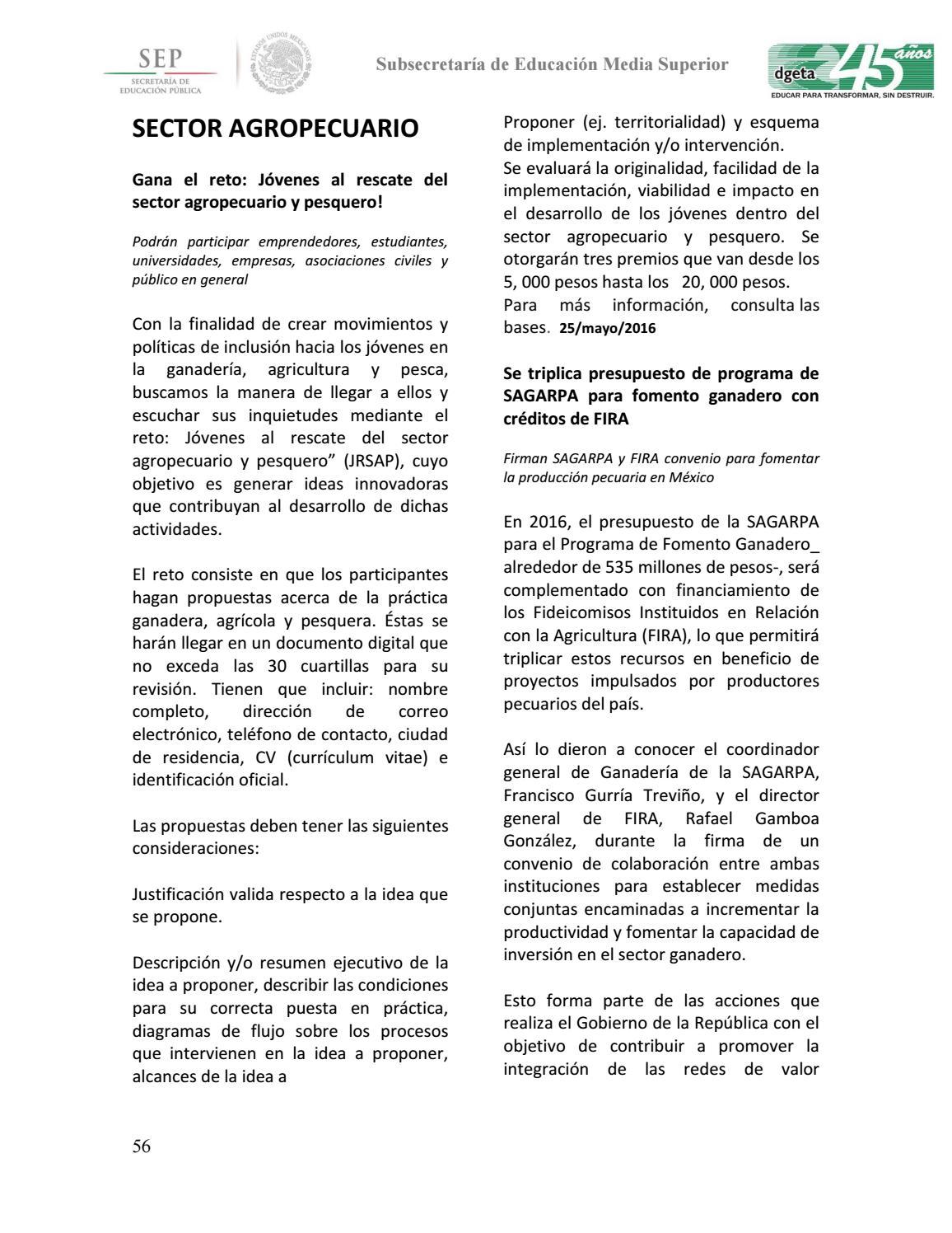 Famous Curriculum Resumen Ejecutivo Images - Examples Professional ...
