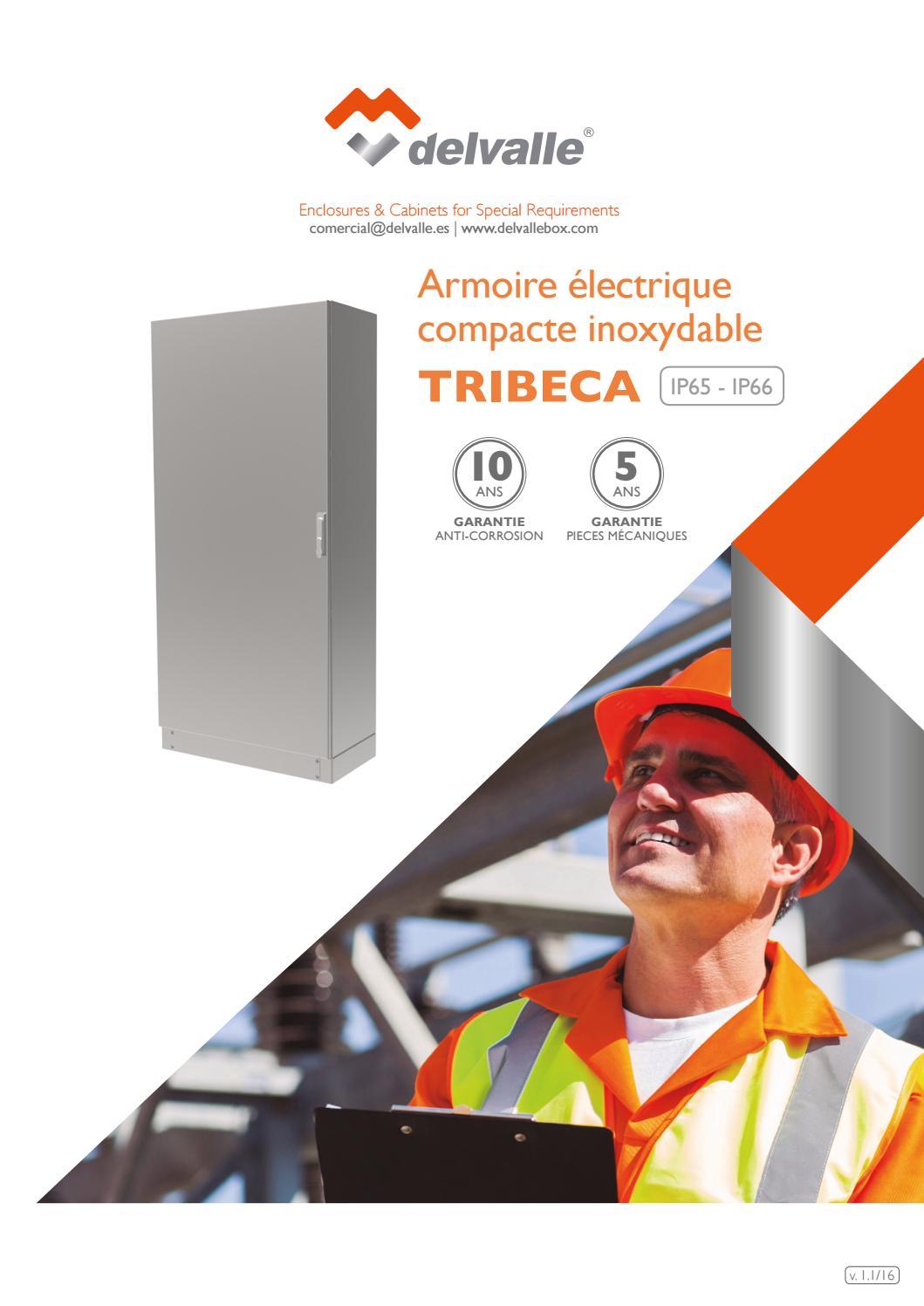 Armoire Electrique Compacte Tribeca Ip65 66 Delvalle V 1 1 16 By