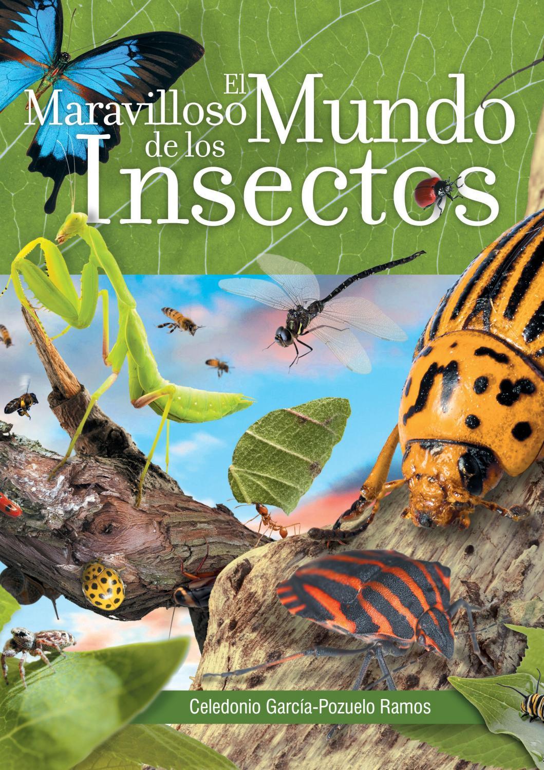 El Mundo de los Insectos by Safeliz - issuu
