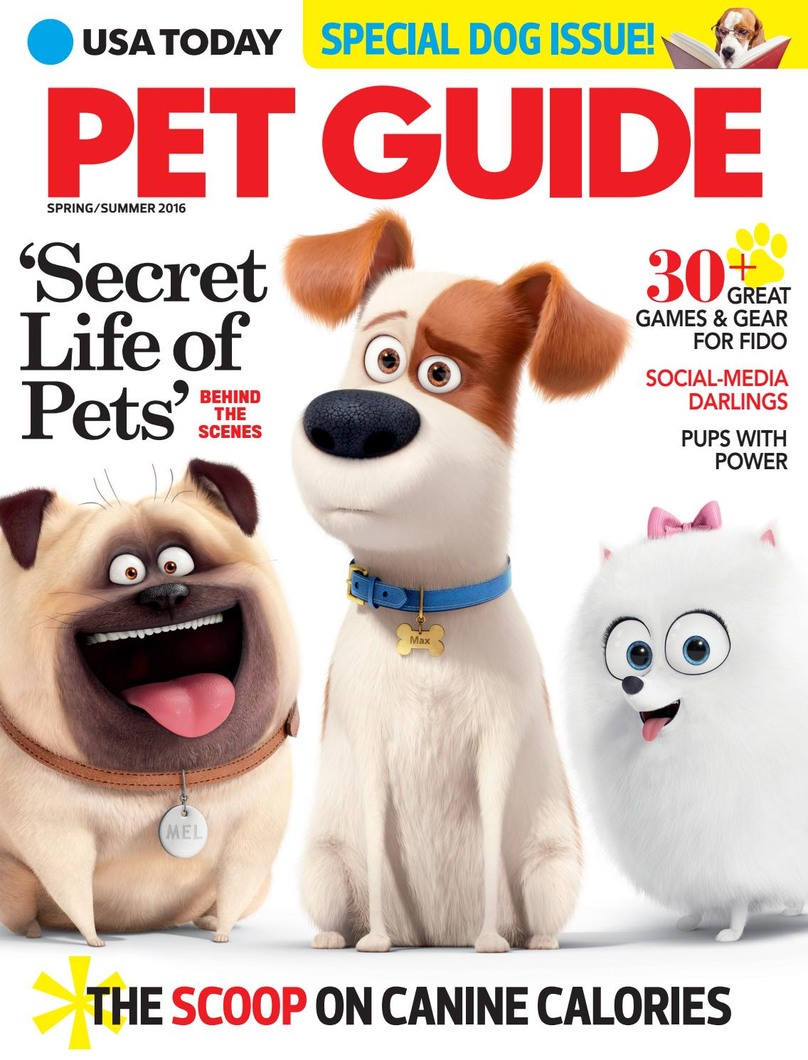 PET Guide Magazine 2016 by STUDIO Gannett - issuu