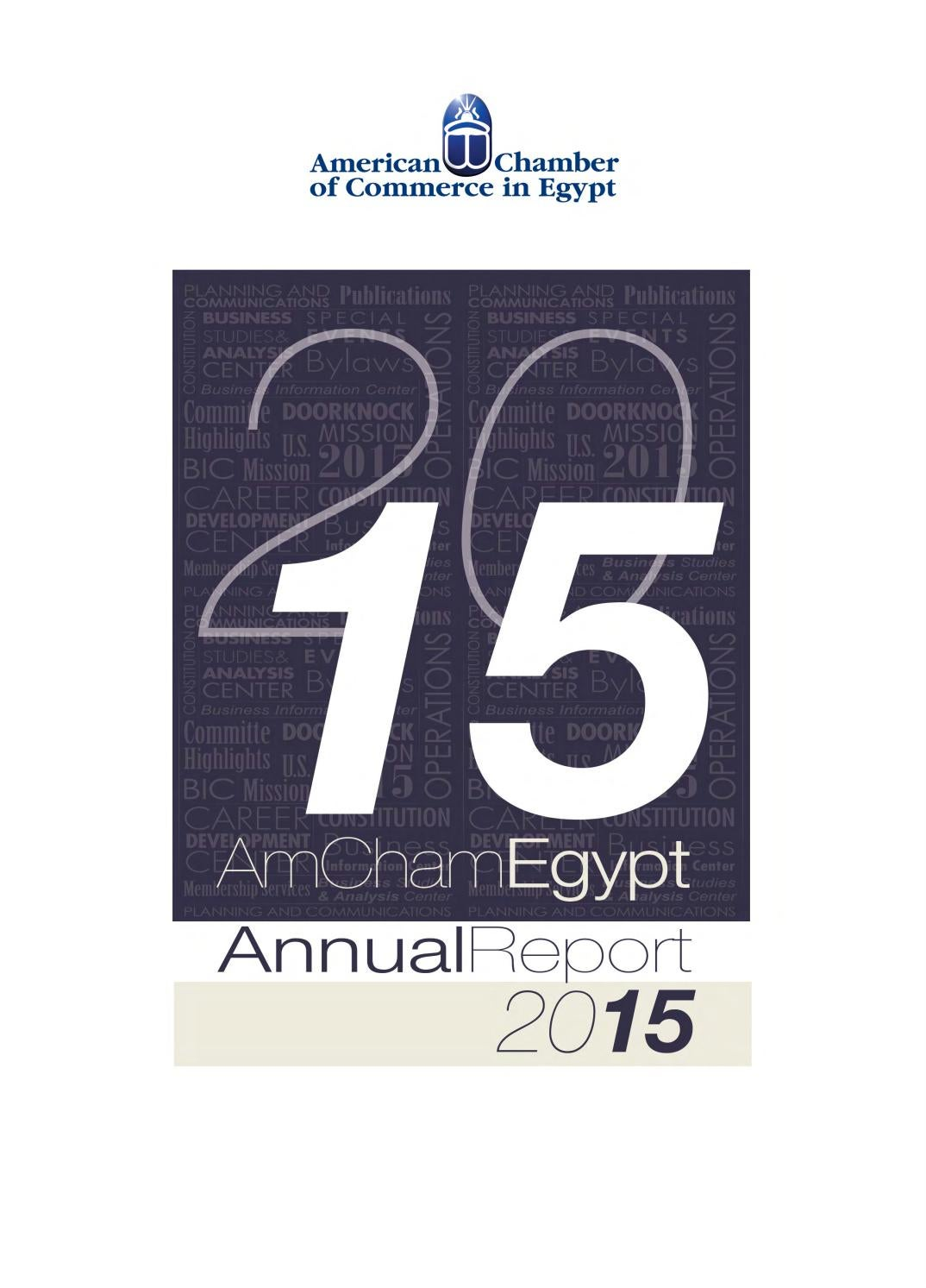 Amcham Annual Report 2015 By Business Monthly Issuu