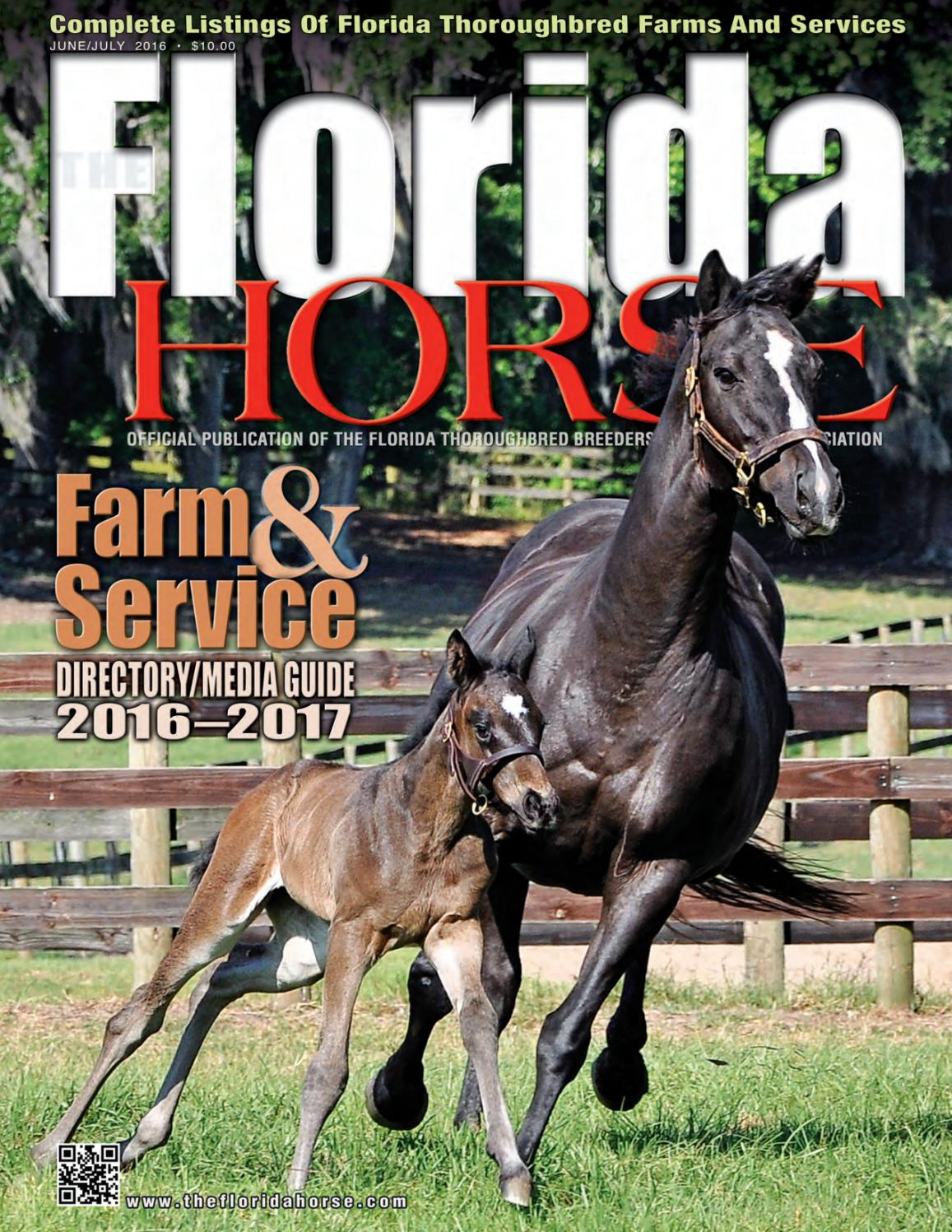 Florida Horse Directory June July 2016 By Equine Published2011 9 28 43300 Authorrebekka Keyword Four Way Remote Publications Issuu