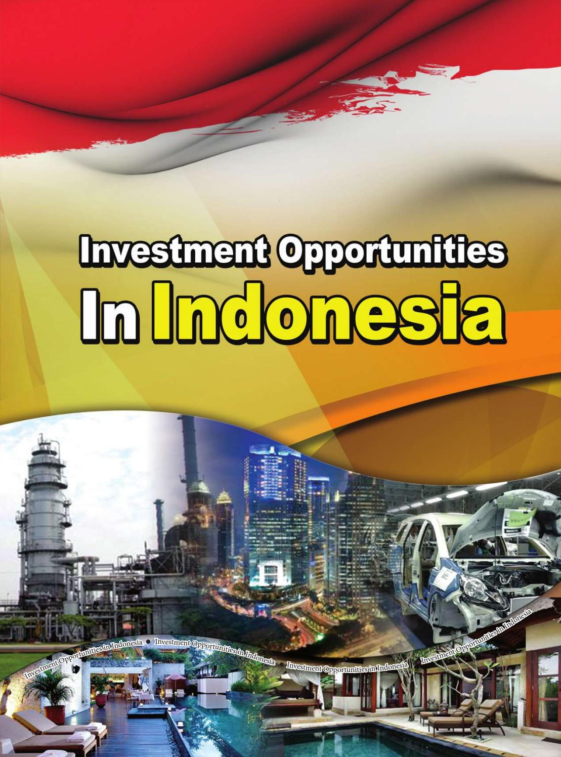 Investment Opportunities In Indonesia By PIDII Issuu