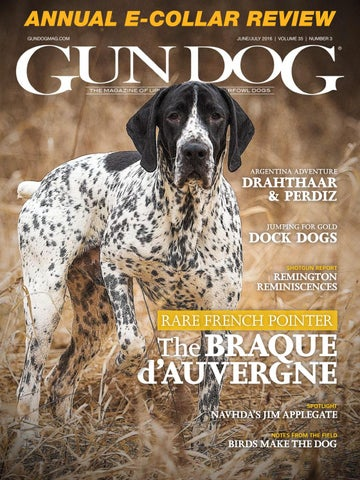 The gun dog 2016 by Richard Tunner - issuu