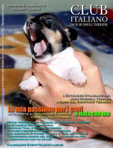 Club Italiano Jack Russell Terrier N6 2016 By Club Italiano