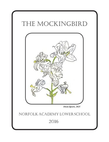 Page 1 The MOckingbird