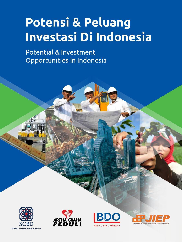 Potensi Peluang Investasi Di Indonesia By Adler M Rasul Issuu Produk Ukm Bumn Keripik Sukun 200 Gr