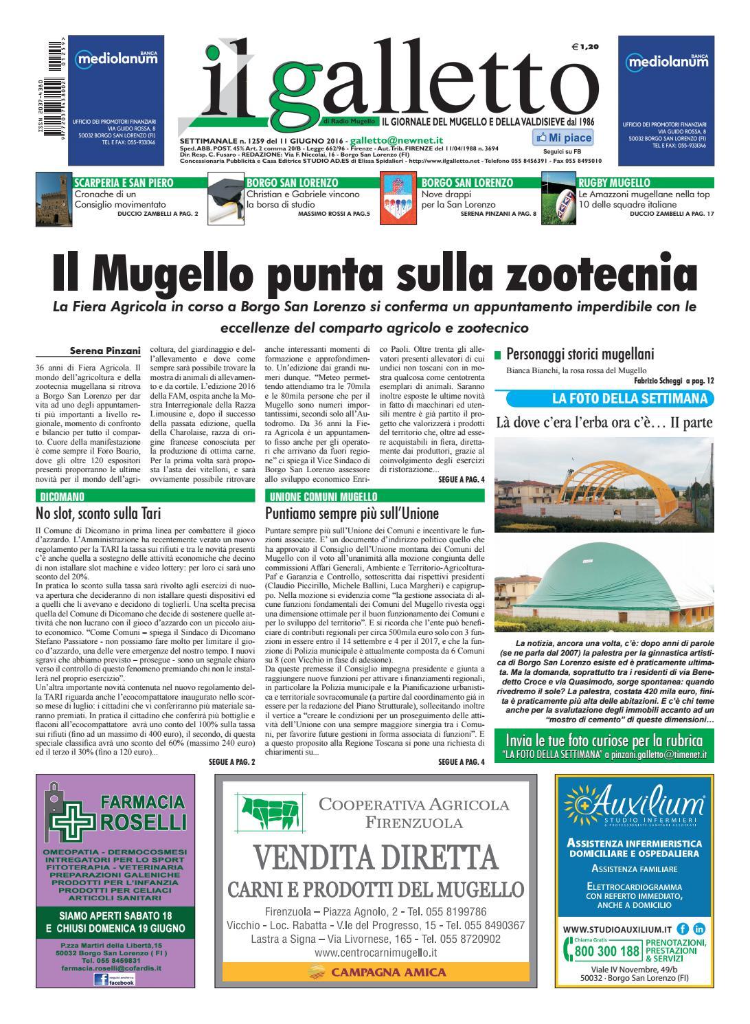 info for d7932 a6f4e Galletto 1259 del 11 giugno by Il Galletto Giornale - issuu