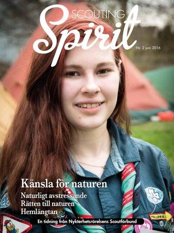 Ransberg Knutsdalen 5 Vstra Gtalands ln, Kpmannebro