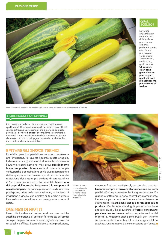Varietà Zucchine Da Fiore greenstyle estate 2016 by edizioni laboratorio verde - issuu