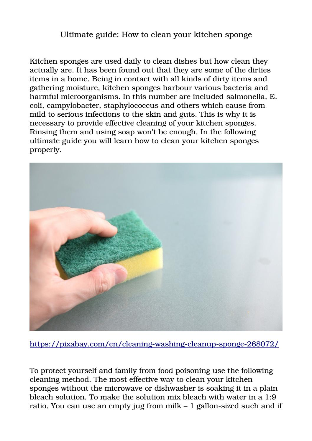 Ultimate Guide How To Clean Your Kitchen Sponge By Best Cleaners Kentish Town Issuu,Where Is Diana Buried