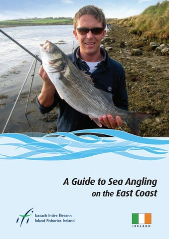 Guide to Sea Angling on Ireland's East Coast (Carlingford