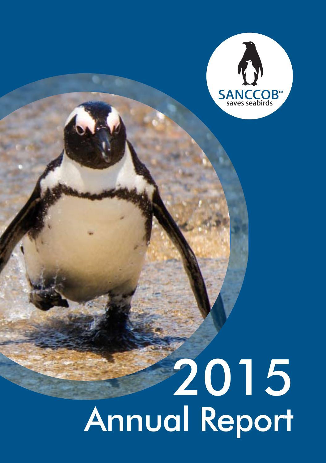SANCCOB Annual Report 2015 by Sheila McCallum issuu