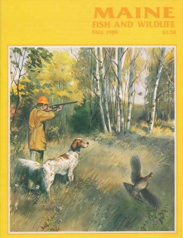 Maine fish and wildlife magazine fall 1989 by maine state for Maine fish wildlife