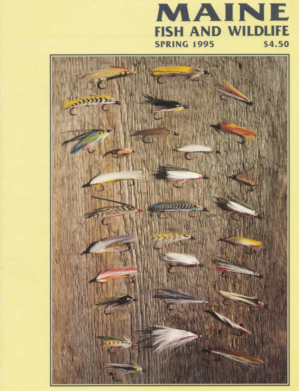 Maine fish and wildlife magazine spring 1995 by maine for Maine state fish