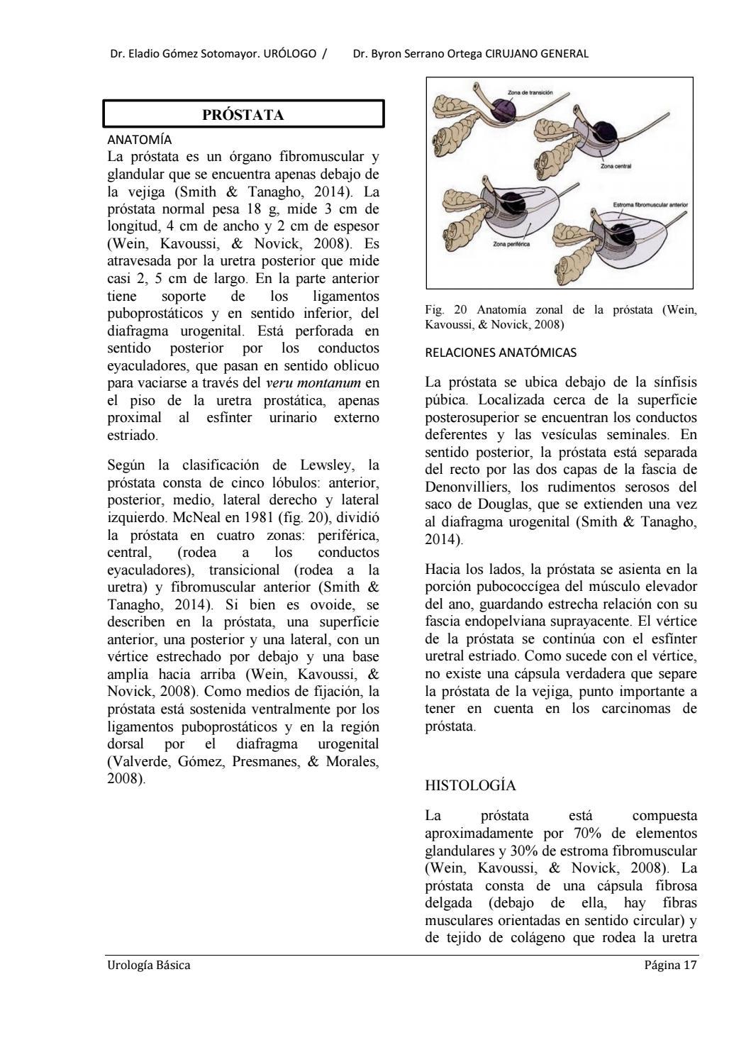 Libro de urología dr ortega b 2016 by suracademia - issuu