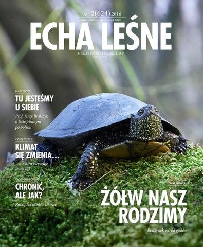 Echa Leśne Nr 2 624 2016 By Lasy Państwowe Issuu