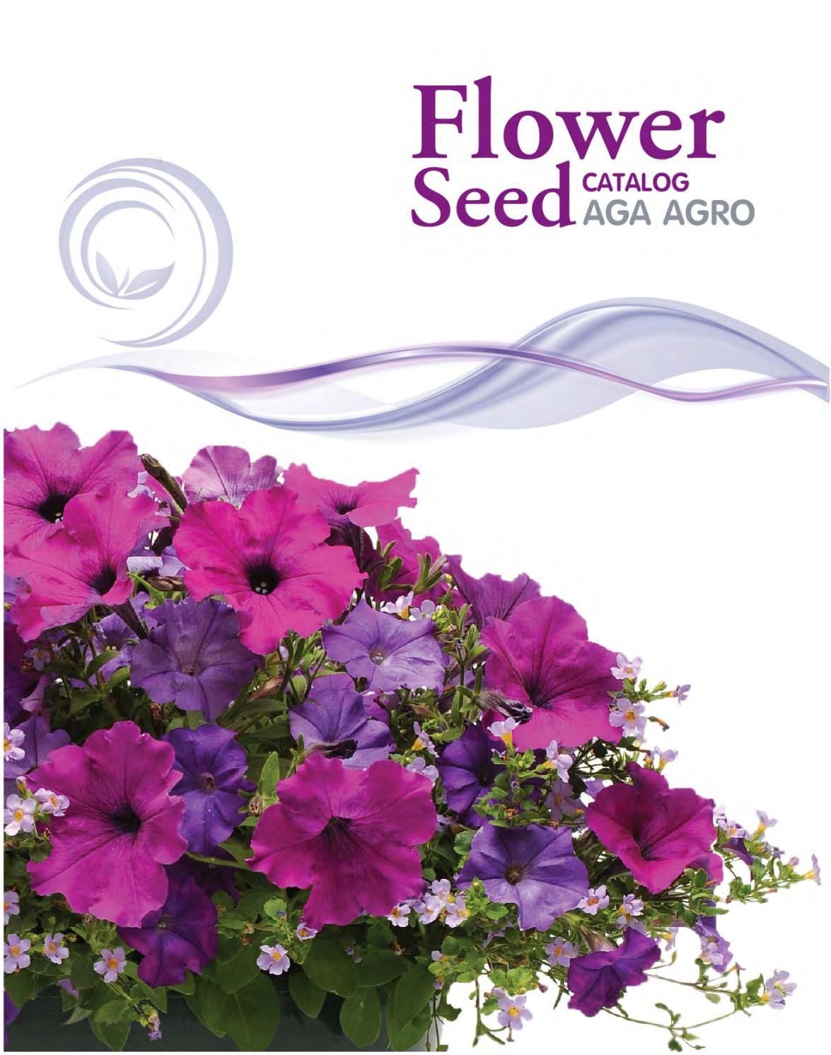 Aga flower seed catalog for International by Aga Agro - issuu
