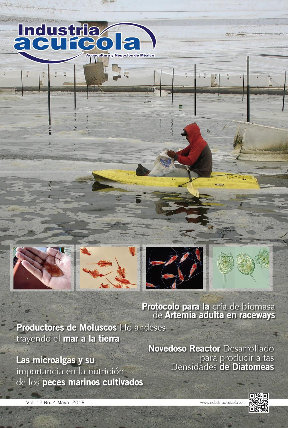 Revista industria acuicola 12 4 by aqua negocios sa de cv for Tipos de estanques para acuicultura