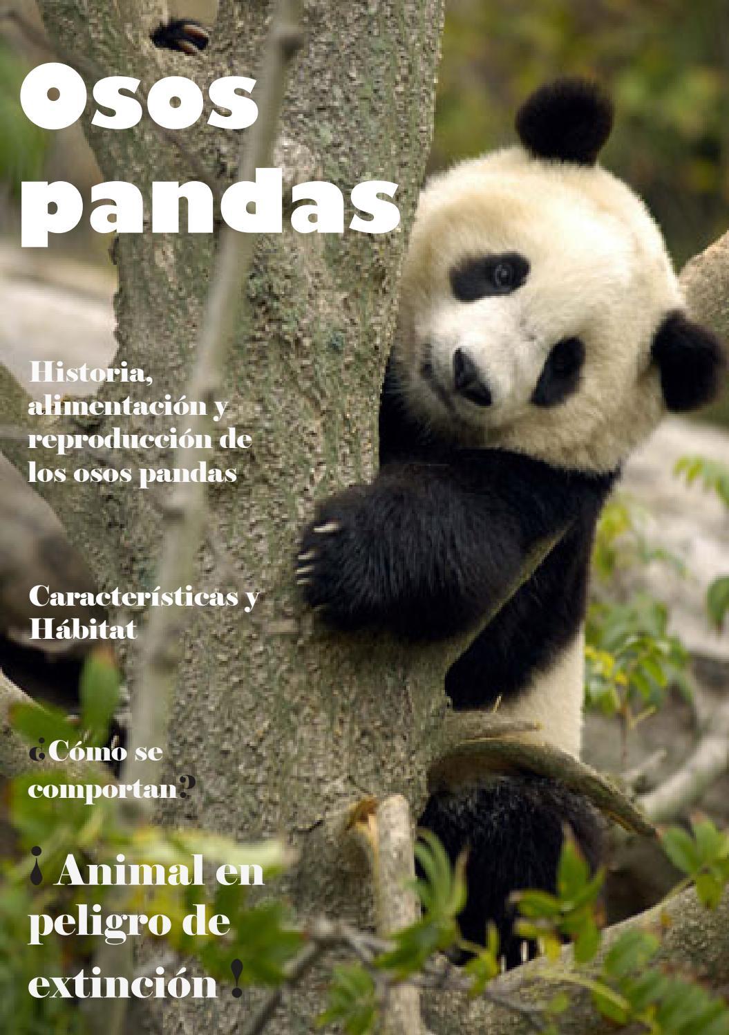 Osos Pandas by Karina ...M Company Logo