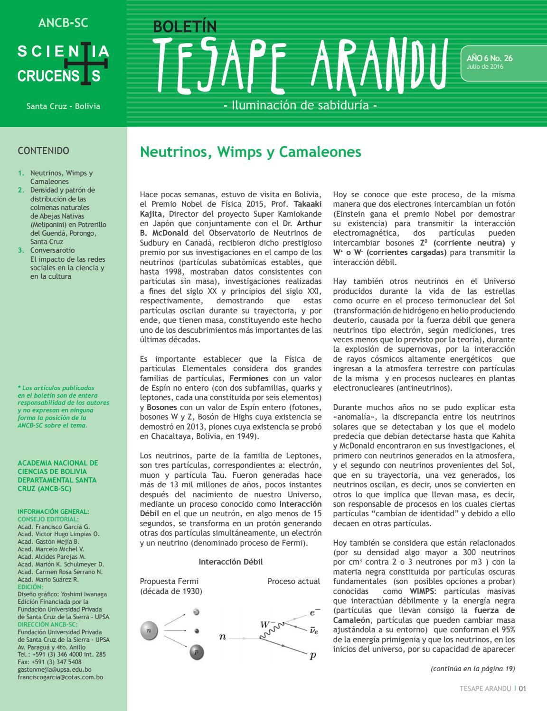 Boletin #26 - Academia Nacional de Ciencias de Bolivia ...