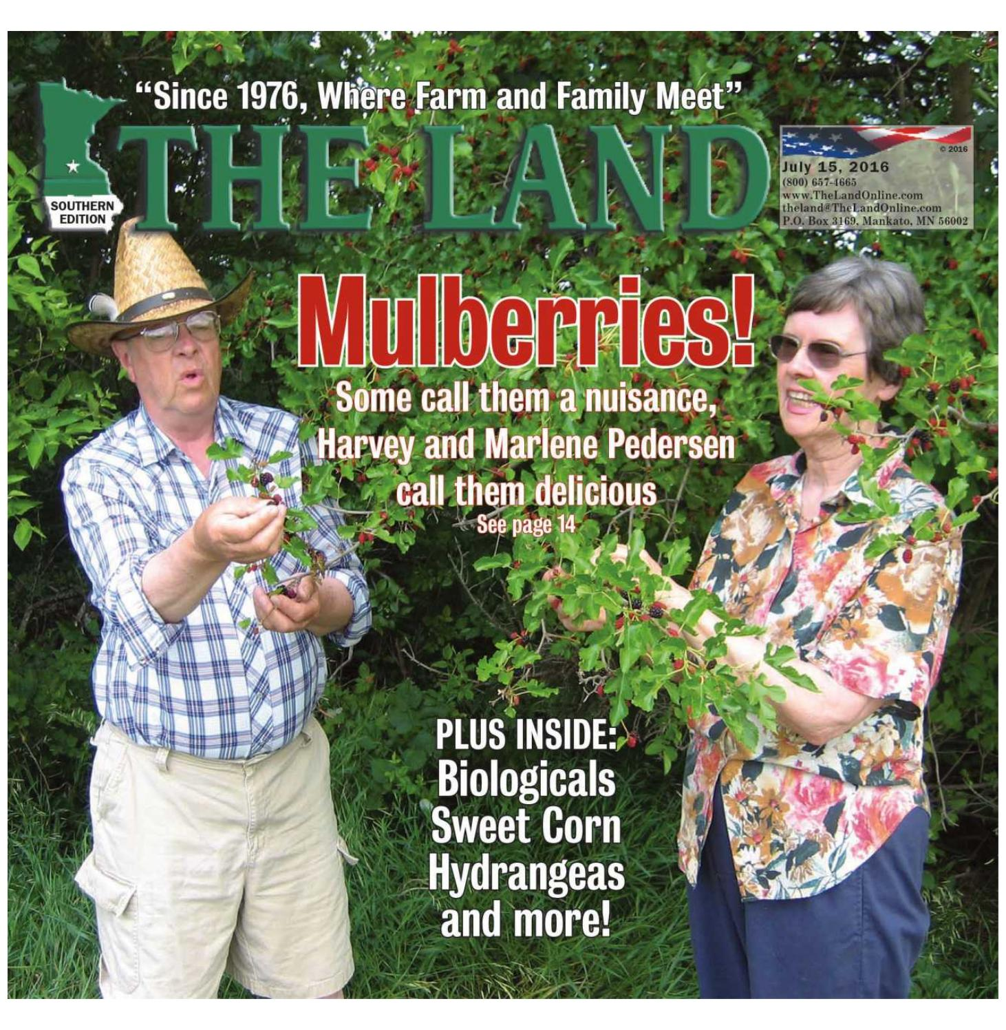 THE LAND July 15 2016 Southern Edition by The Land issuu
