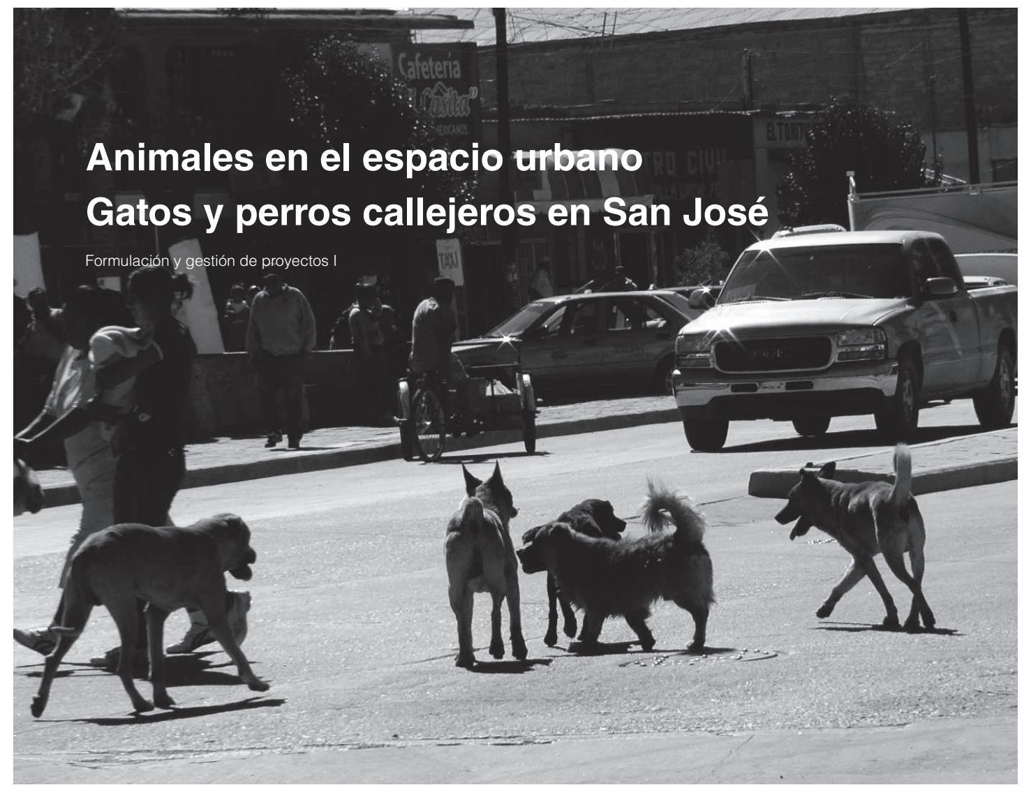 Animales en el espacio urbano: gatos y perros callejeros en San José ...