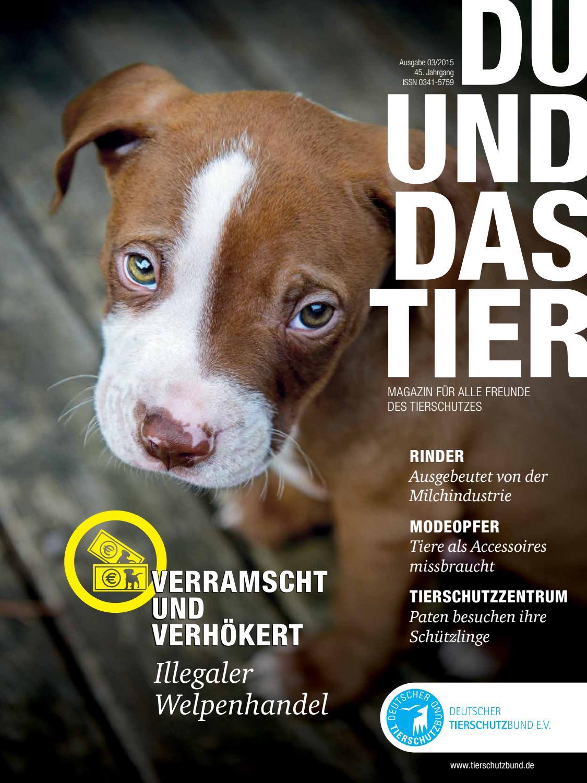 DU UND DAS TIER 3/2015 by DU UND DAS TIER, Deutscher Tierschutzbund ...