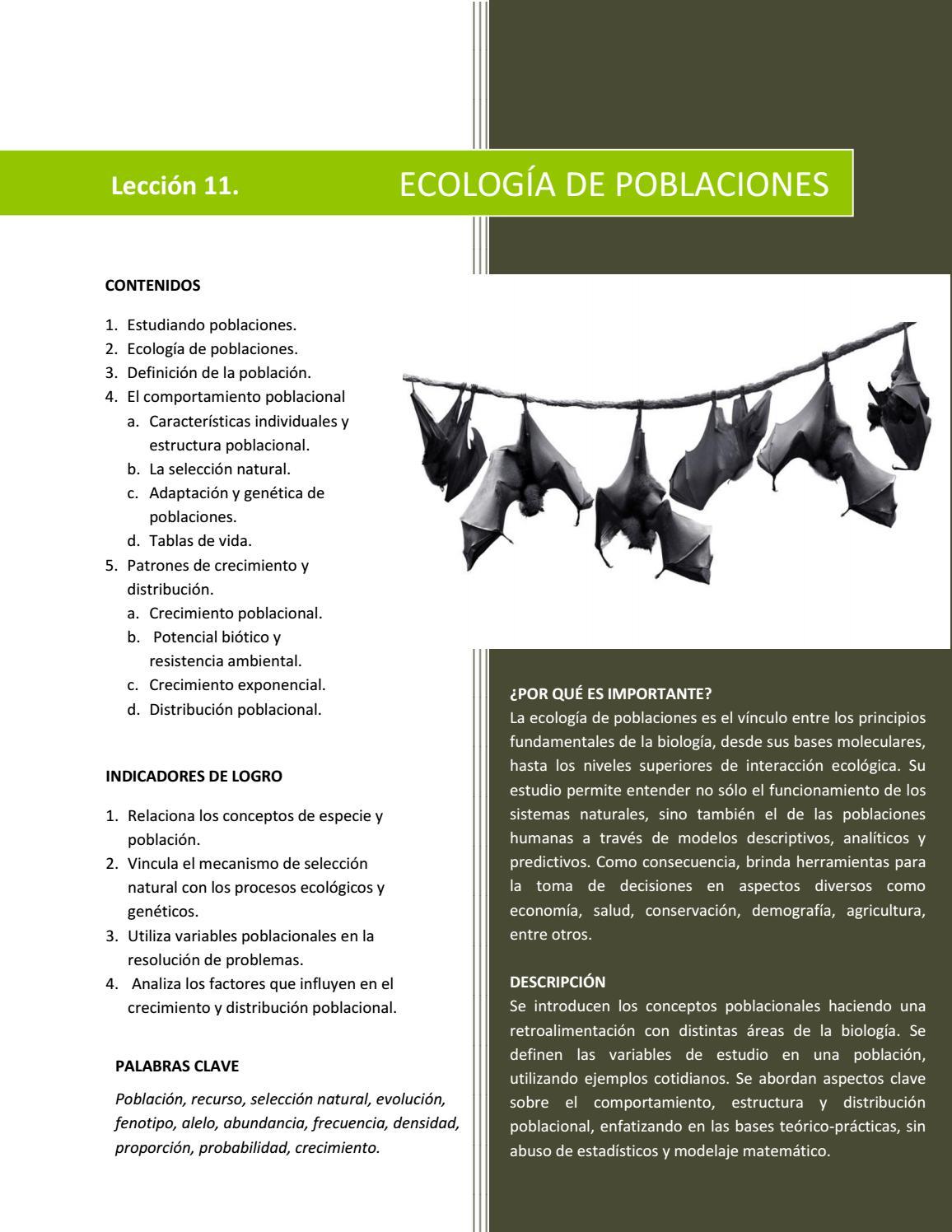 Septimo Grado Biología By Arnoldo Romero Issuu