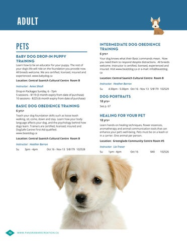 Dog Training Brochure