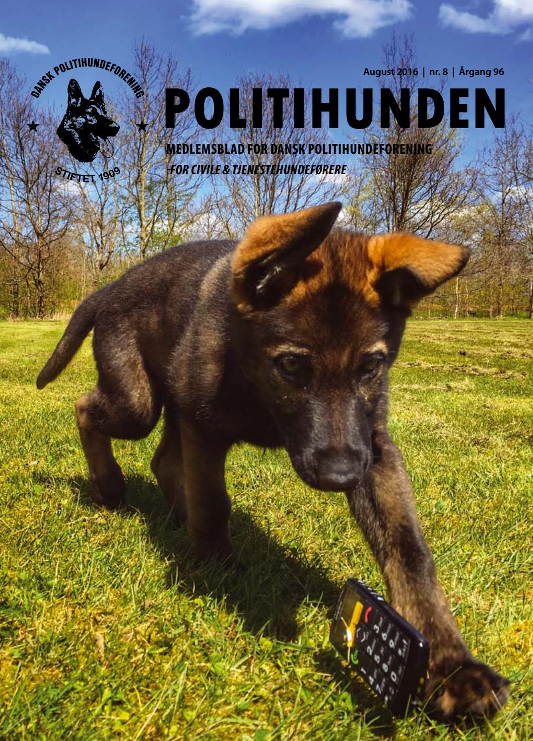 Picture of: Politihunden August 2016 By Side Om Side Aps Issuu
