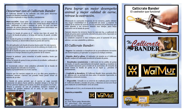 Walmur Castrador Callicrate Bander by Arturo Carbonell - issuu