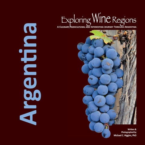 Shop For Cheap Argentina 2007 Route 40 Rio Negro Neuquen Pair With Labels Volcano Mint Stamps Latin America