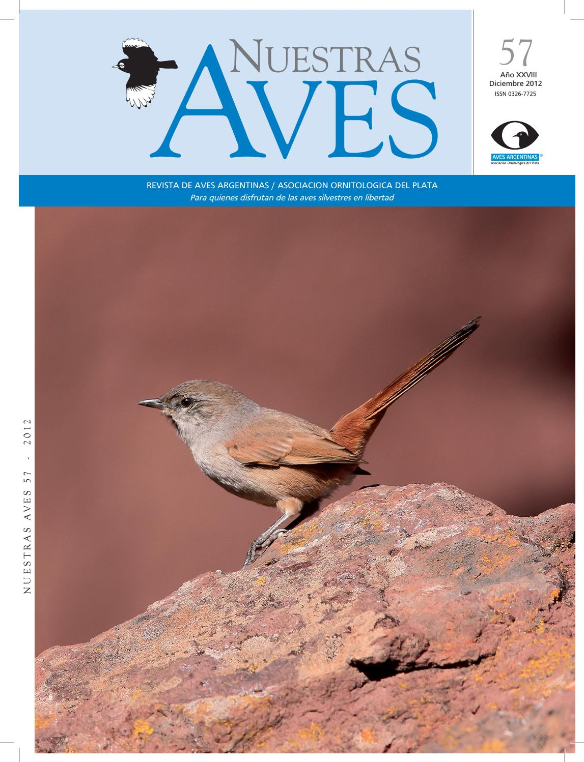 e9498440b6b5e Revista nuestras aves n56 by Aves Argentinas - issuu