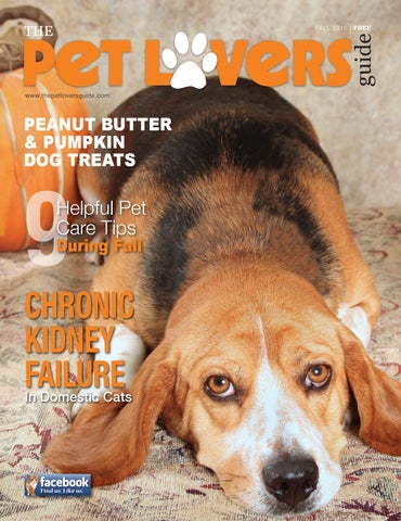 The pet lover's guide summer 2018 by pet lovers guide issuu.