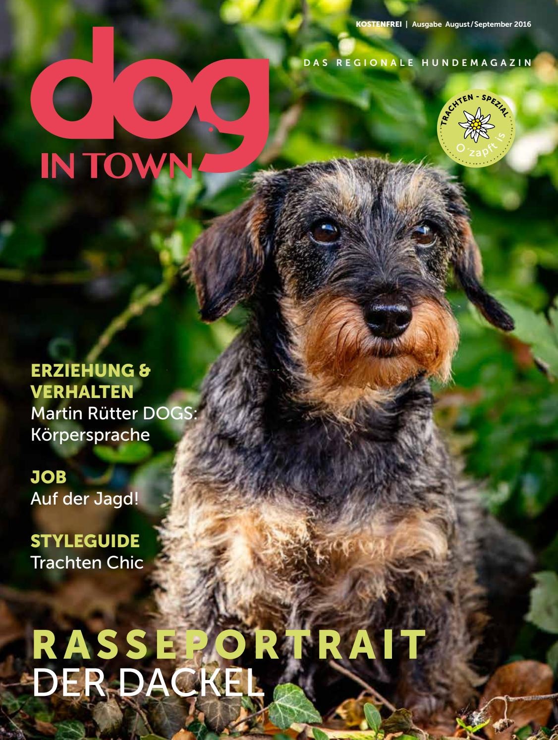 dog IN TOWN Ausgabe 03 | August/September 2016 by dog IN TOWN - issuu