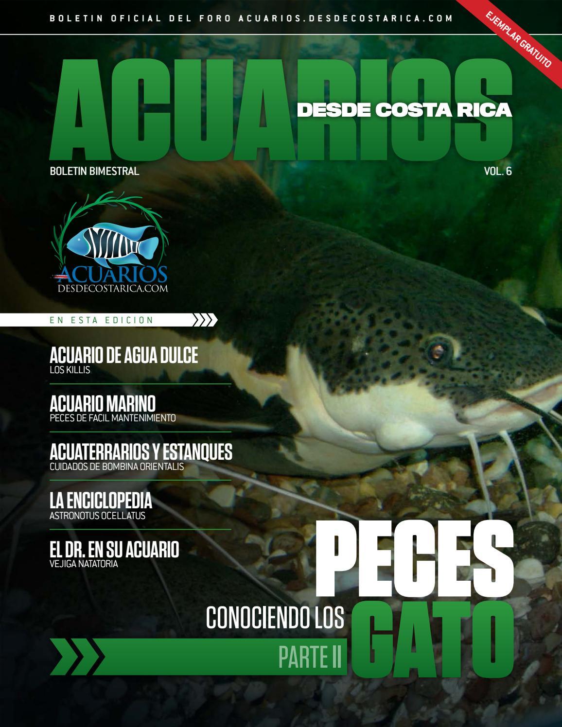 Revista acuarios desde costa rica vol 6 by la magia de los for Manual de peces ornamentales