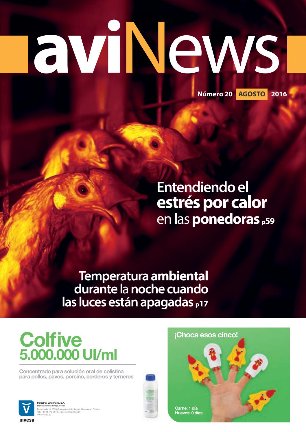 Avinews agosto 2016 by Grupo agriNews - issuu