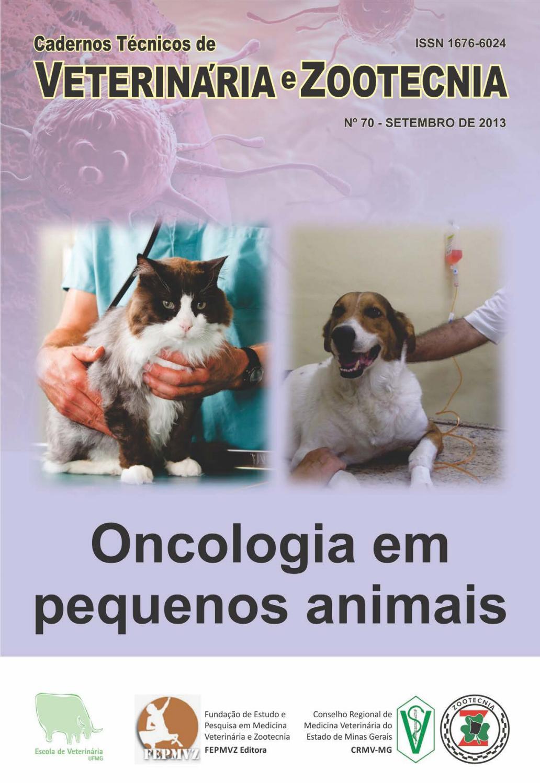 fdc854701b6 Cadernos Técnicos de Veterinária e Zootecnia - nº 70 - Oncologia em  Pequenos Animais by Escola de Veterinária da UFMG - issuu